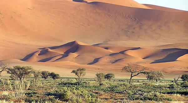 Namib Desert, Namib-Naukluft, Namibia. Author and Copyright Marco Ramerini..
