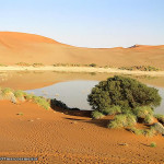 Sossusvlei, Namib Desert, Namib-Naukluft, Namibia. Author and Copyright Marco Ramerini