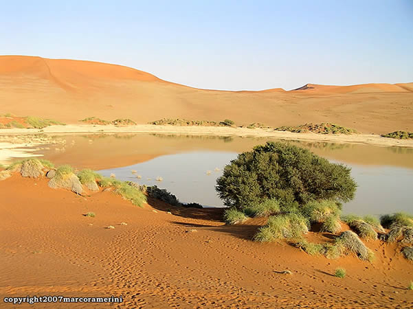 Sossusvlei Pools Of Water In The Dunes Travel Guide