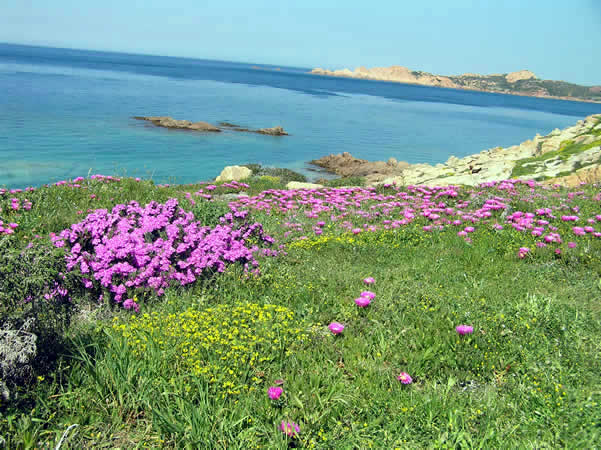 Isola Rossa, Sardinia, Italy. Author and Copyright Marco Ramerini