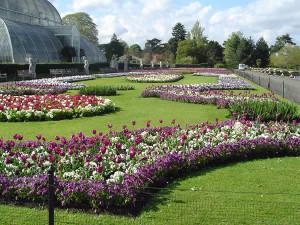 基尤皇家植物园,伦敦,英国. Author and Copyright Marco Ramerini