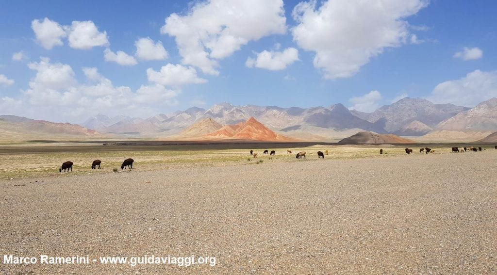 Tiere, die nach der Grenze zwischen Kirgisistan und China weiden lassen. Autor und Copyright Marco Ramerini
