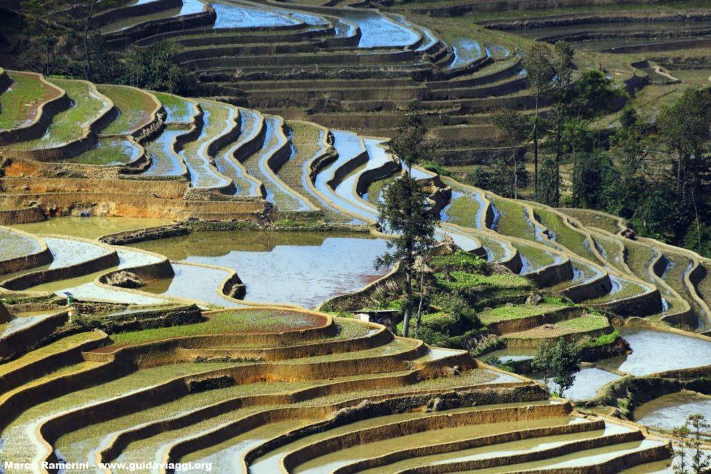 Touristische Attraktionen von Yunnan. Reisfelder, Yuanyang, Yunnan, China. Autor und Copyright Marco Ramerini..