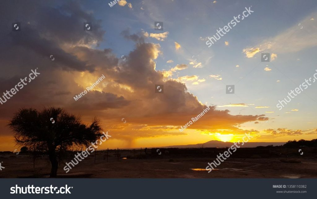 Sunset with lonely tree and storm forming in the distance in the arid lands of the Atacama desert, Chile. Author and Copyright Marco Ramerini