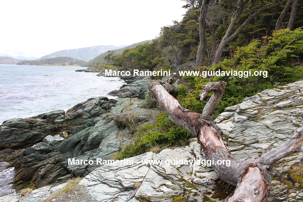 Bahia Ensenada Zaratiegui, Tierra del Fuego National Park, Argentina. Author and Copyright Marco Ramerini