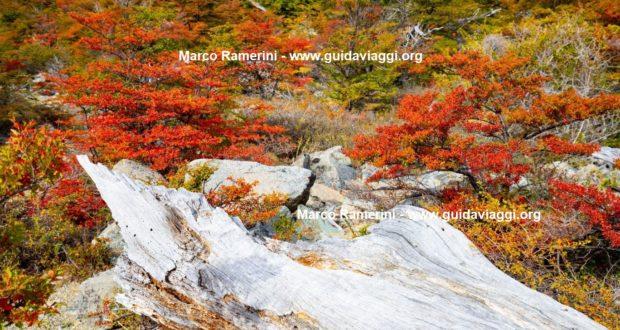 Chorrillo del Salto, El Chalten, Los Glaciares National Park, Argentina. Author and Copyright Marco Ramerini