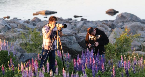 Photographers, Lake Tekapo, New Zealand. Author and Copyright Marco Ramerini