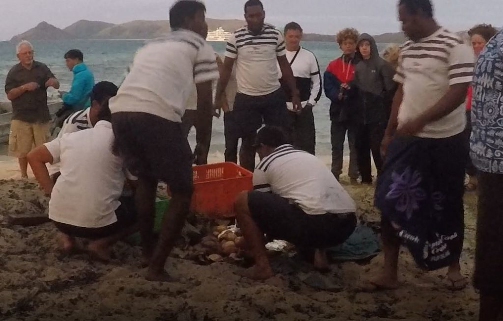 Preparation of Lovo, Fiji. Author and Copyright Marco Ramerini
