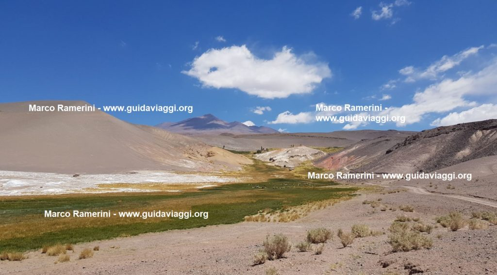 An unexpected green oasis, Puna, Argentina. Author and Copyright Marco Ramerini