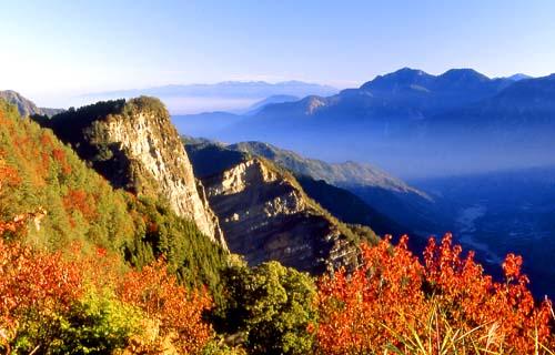 Alishan in the fall. Photo courtesy Tourism Bureau