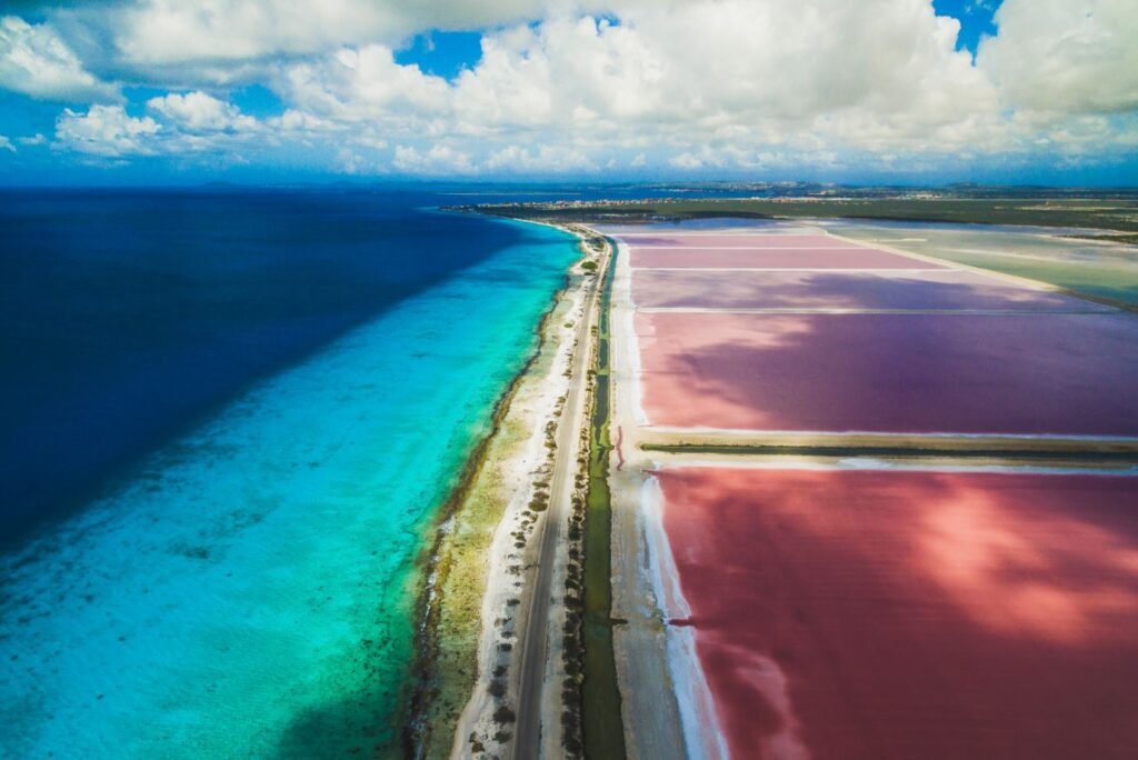 The colors of the island of Bonaire. Photo Credit Bonaire Tourism