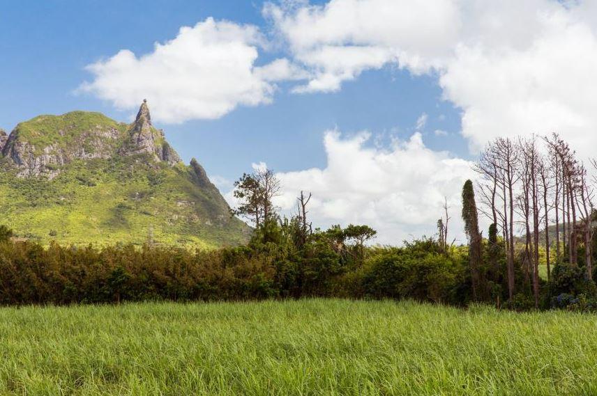 Der seltsame Stein über dem Berg Pieter Both. Credit Mauritius Tourism