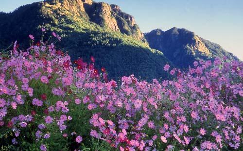 Tri-mountain National scenic Area. Photo courtesy Tourism Bureau